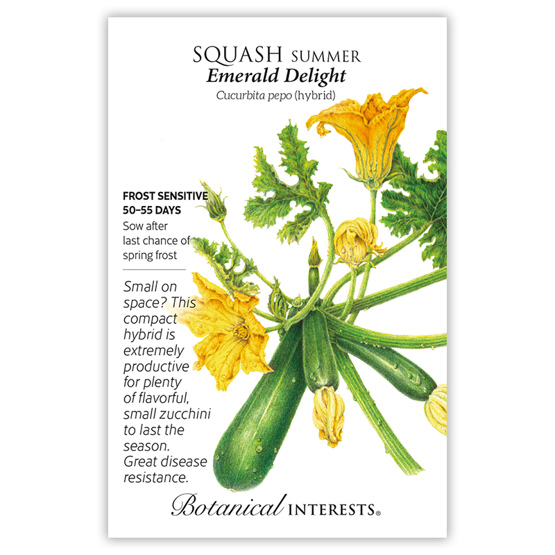 Emerald Delight Summer Squash Seeds