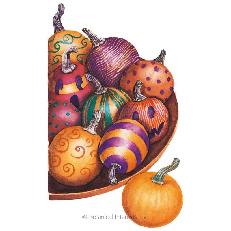 Little October Pumpkin Seeds
