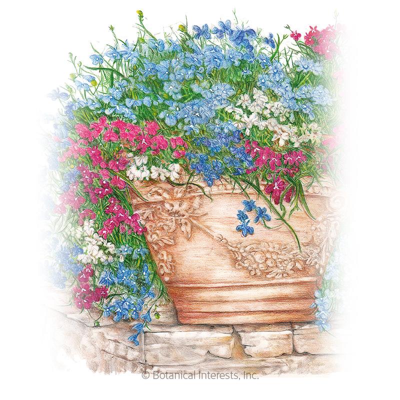 Cascade Of Color Trailing Lobelia Seeds View All Flowers