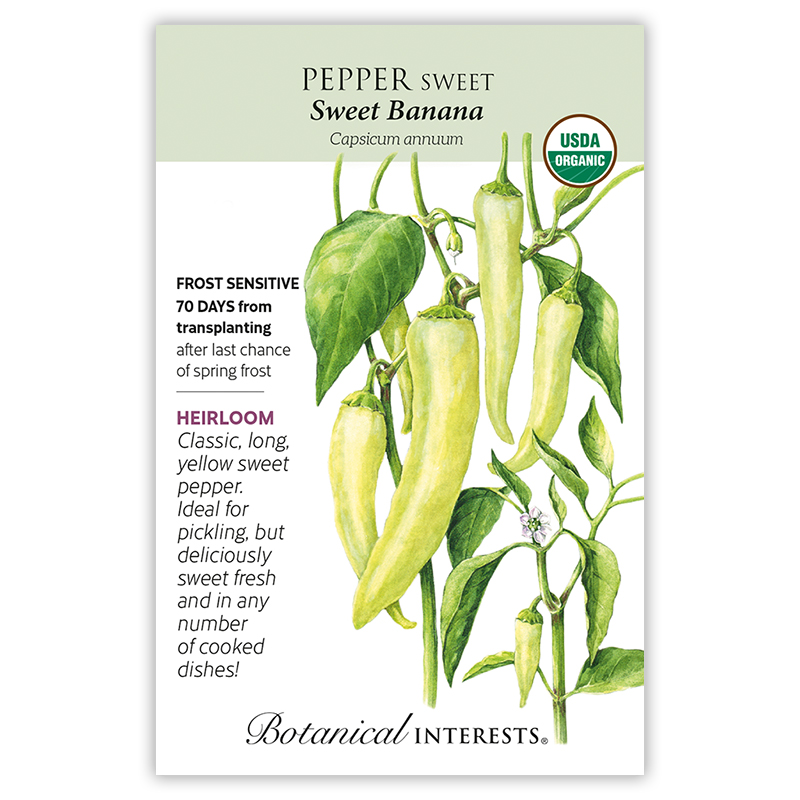 Sweet Banana Pepper Rare Seeds Grown to Organic Standards SALE