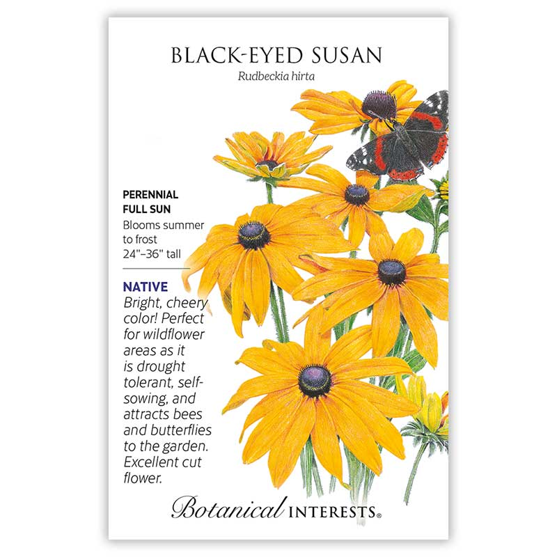 Black-Eyed Susan Seeds       view 3