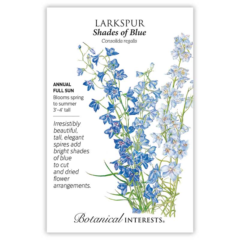Shades of Blue Larkspur Seeds     view 3