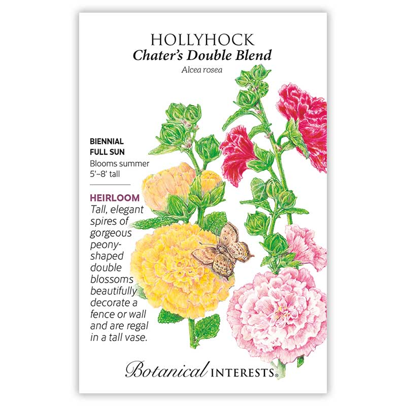 Chater's  Double Hollyhock Seeds