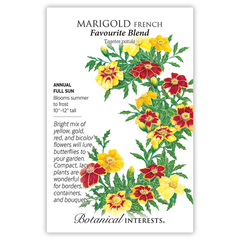 Favourite Blend French Marigold Seeds     view 3