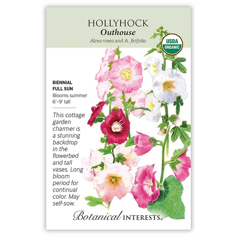 Outhouse Hollyhock Seeds