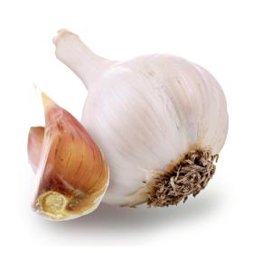 Chrysalis Rose Hardneck Garlic