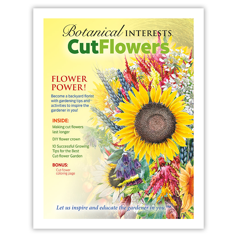 Cut Flower E-Book