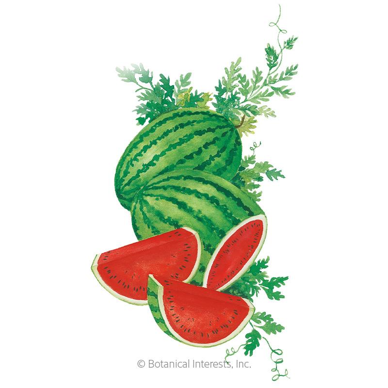 Crimson Sweet Watermelon Seeds