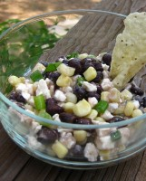 Brian's Better Half Balsamic Black Bean Dip
