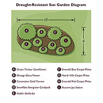 Drought-Resistant Sun Designer Garden
