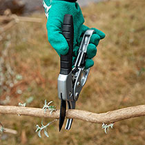 Ratchet Pruning Shears