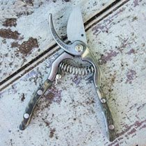 "7"" Stainless Steel Bypass Secateurs"