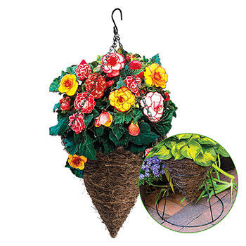 Two-Way Cone Planter