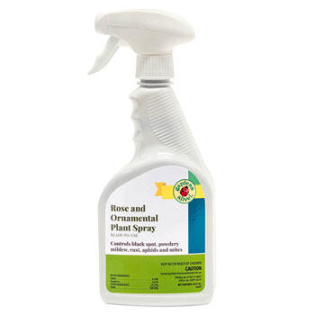Rose and Ornamental Plant Spray