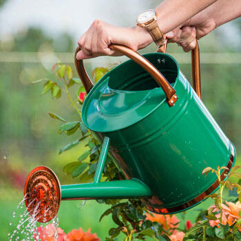 Copper-Trimmed Watering Can