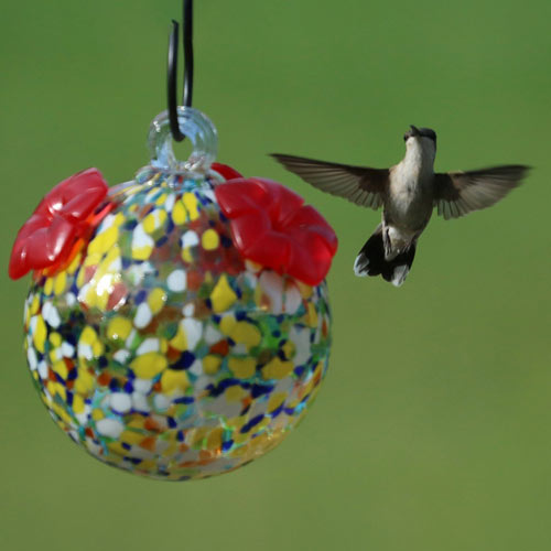 Multicolored Glass Hummingbird Feeder