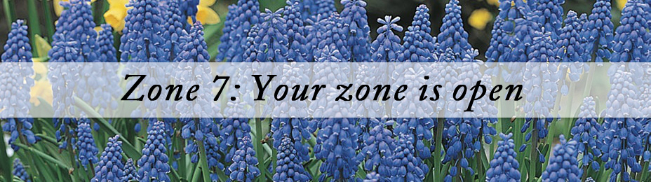 Best Plants for Zone 7