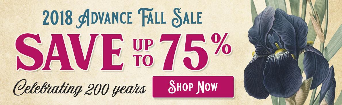 Brecks Fall Sale
