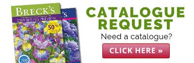 Brecks Catalogue