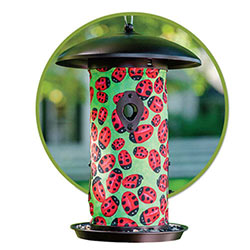 Lady Bug Bird Feeder