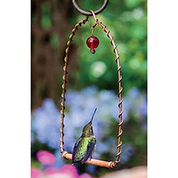 Hummingbird Perch
