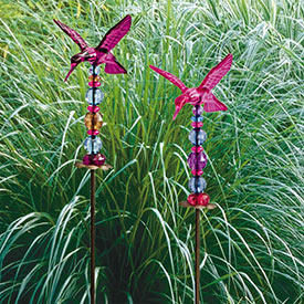 Jeweled Hummingbird Stakes