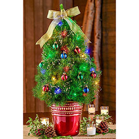 Classically Christmas Decorated Spruce Tree