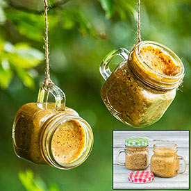 Peanut Butter Mason Jar Feeders - Set of 2