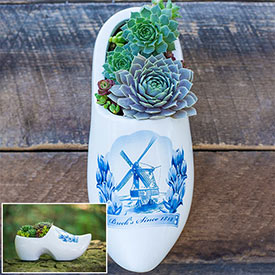 Dutch Shoe Planter