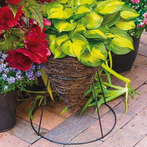 Two Way Cone Planter