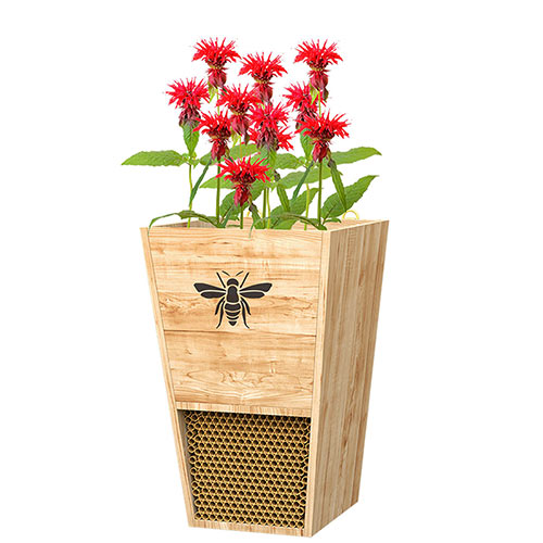 Combo Bee House And Planter