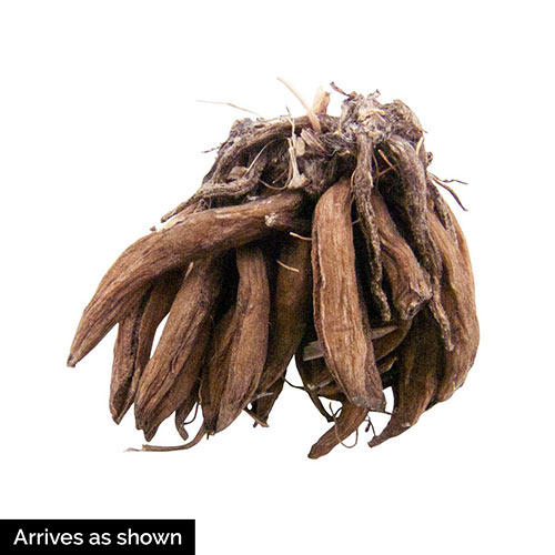 Ranunculus Mixture