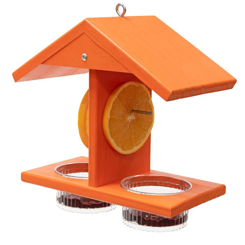 Double Fruit And Jelly Oriole Feeder