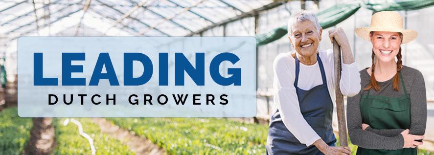 Leading Dutch Growers