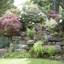 Perennial Beds & Rock Gardens