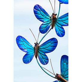 Blue Butterfly Wind Spinnner