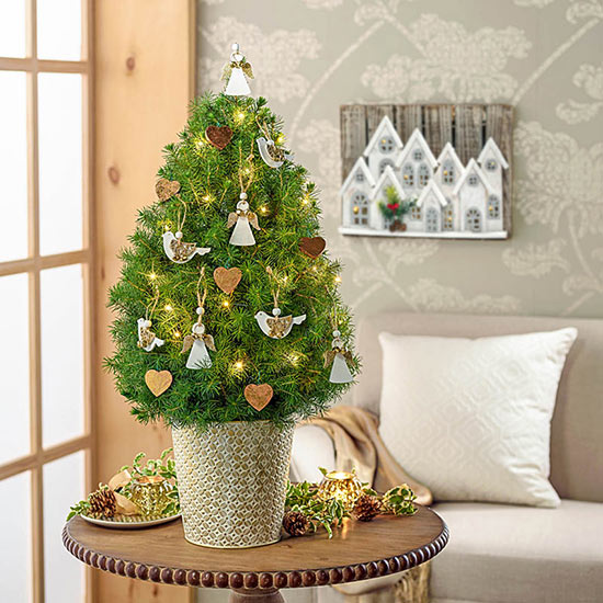Peace on Earth Decorated Spruce Tree