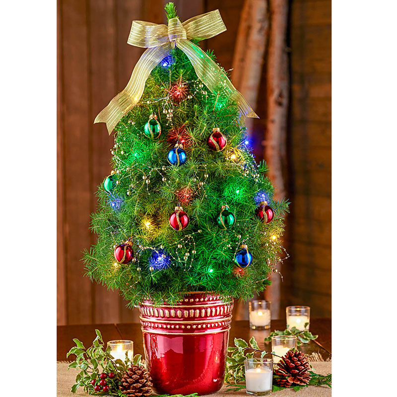 Pre Dressed Christmas Trees: Classically Christmas Decorated Spruce Tree