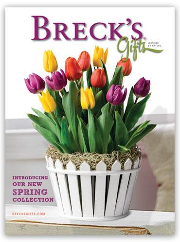 Brecks Catalogue 2014