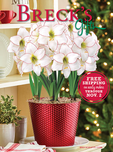 brecks catalogue 2014 - Christmas Decor Catalogs Free