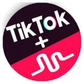 TikTok ++ icon