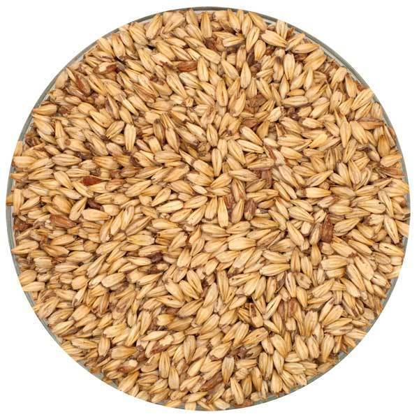 2-row Caramel 10l Malt