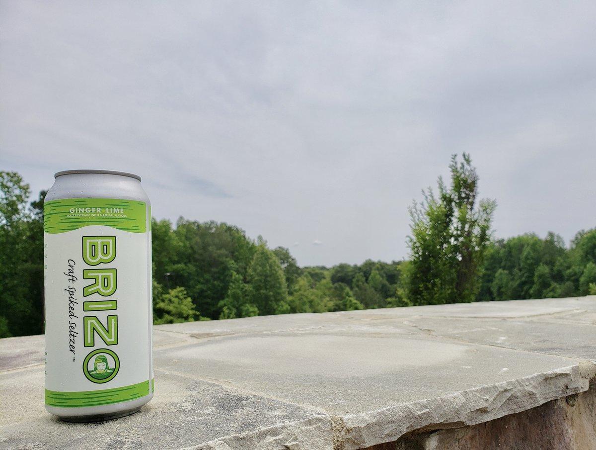 Brizo Seltzer Ginger Lime - Single