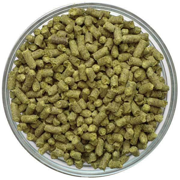 NORTHERN BREWER HOP PELLETS - 1 OZ