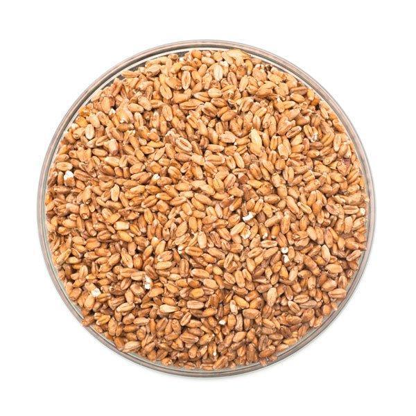 Red Wheat Malt