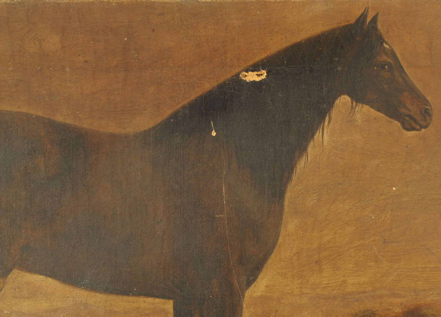 Lot 363: KY or TN horse portrait, possibly Hall's Black Haw