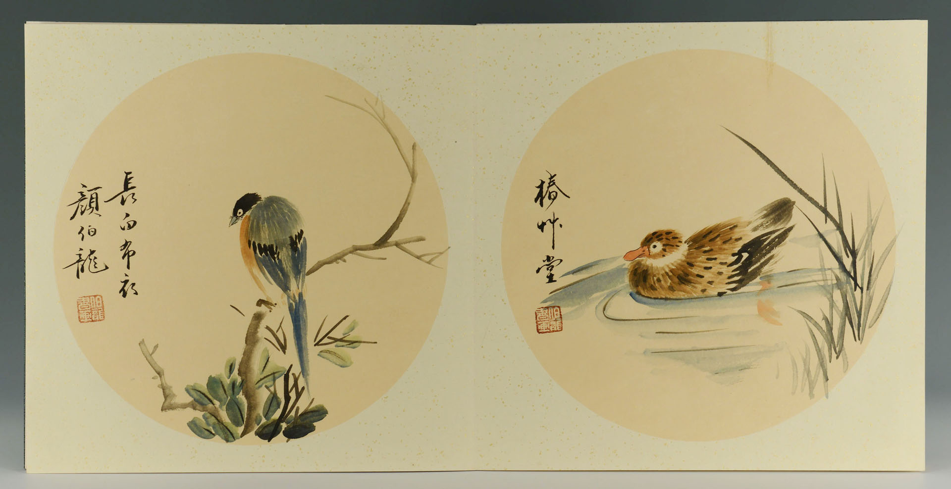 Chinese Painting Album w/ Birds, 16 Paintings