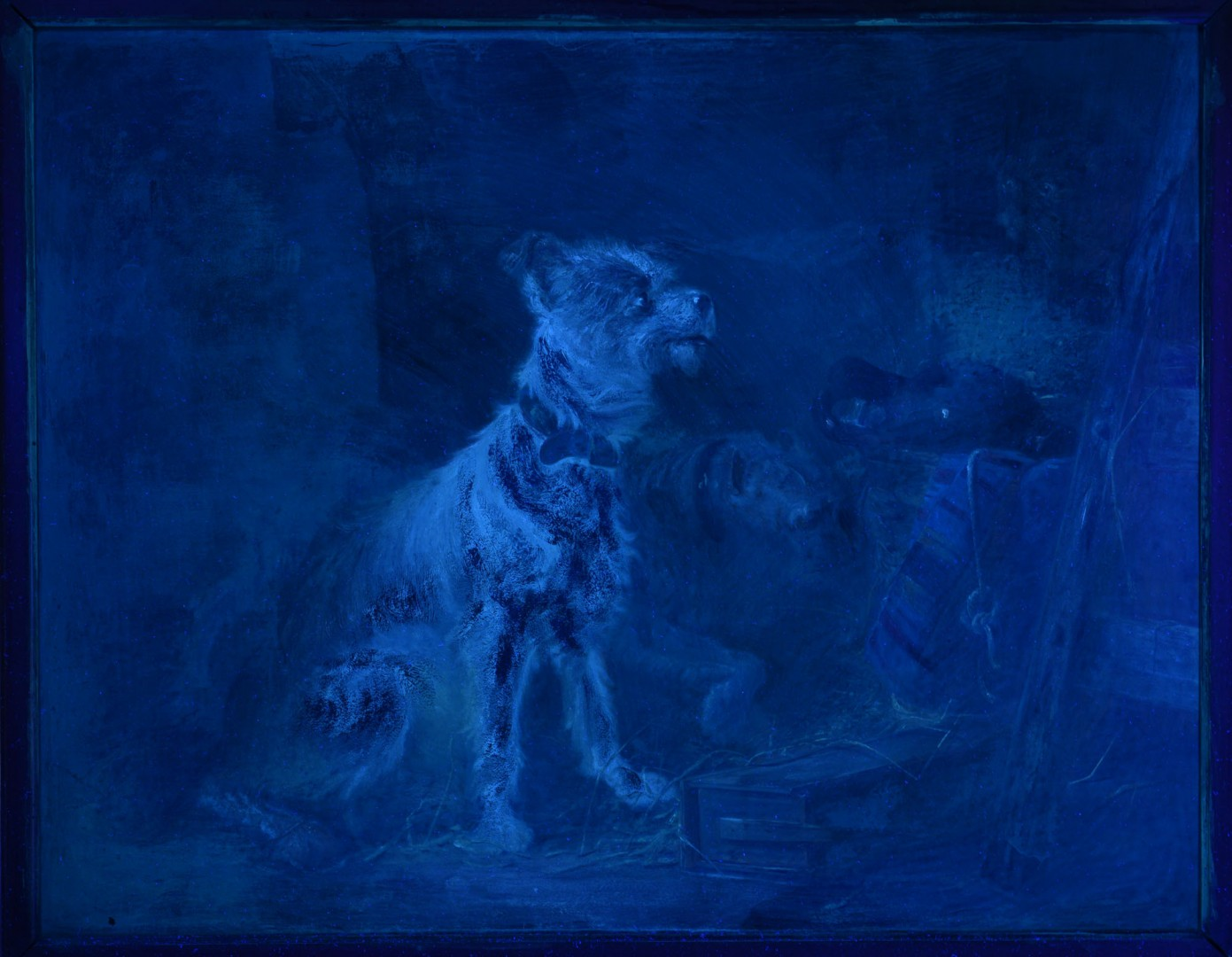 Z. Notermann oil on board, terriers with cat