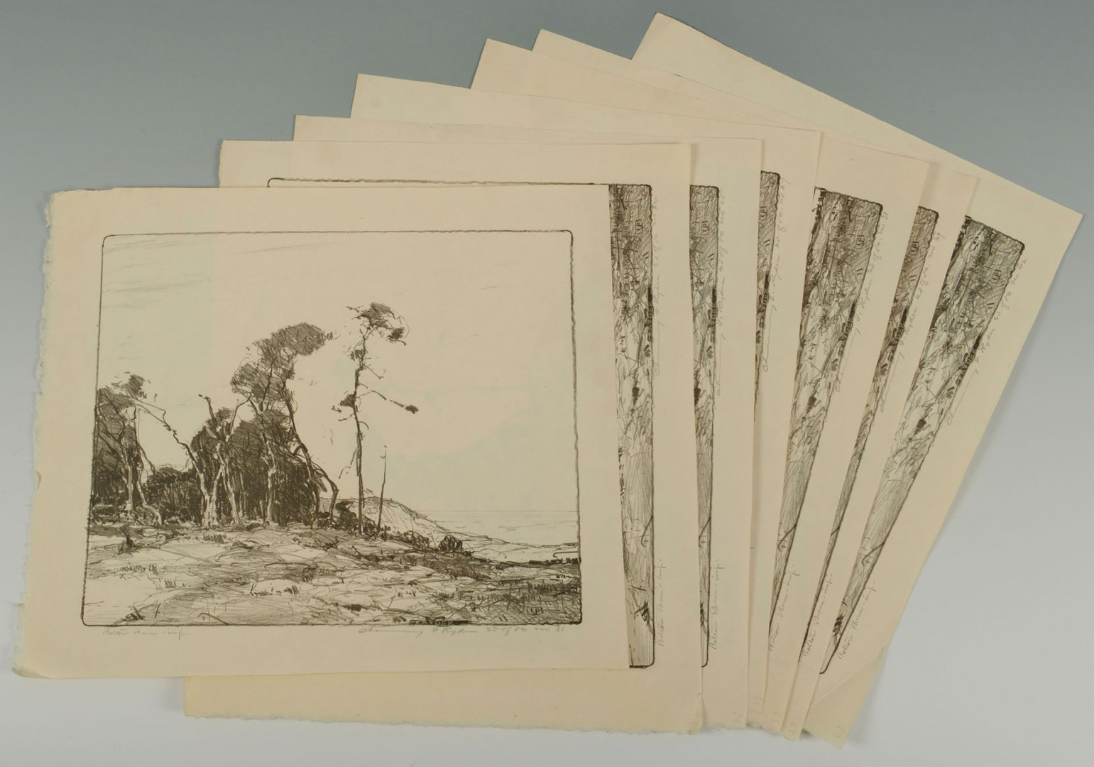 7 Chauncey F. Ryder Stone Lithographs