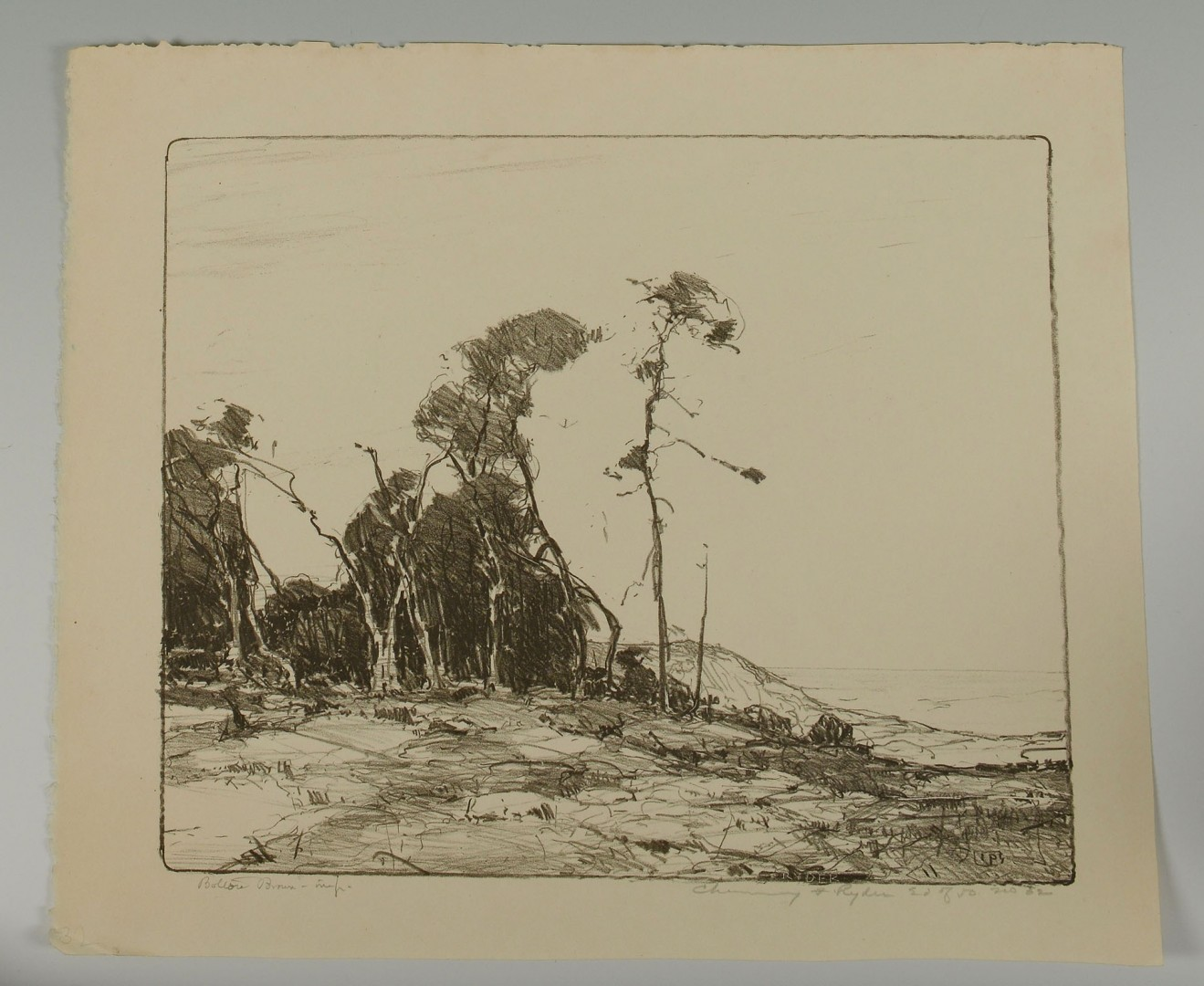 Lot 401: 7 Chauncey F. Ryder Stone Lithographs